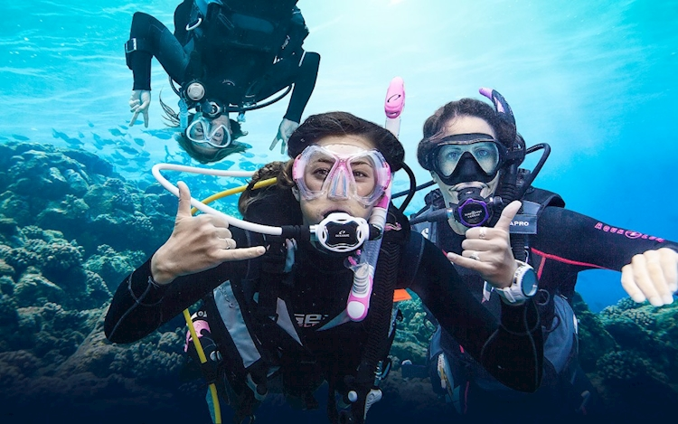 Scuba Diving Tours available on Hero